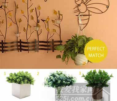 绿色植物搭配可爱的铁艺造型架子