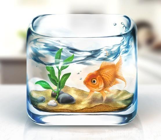 鱼缸设计图工具