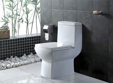 卫生间坐便器排污管安装图解