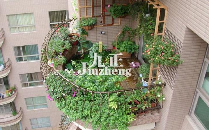 阳台种什么植物风水好 阳台植物日常管理注意事项