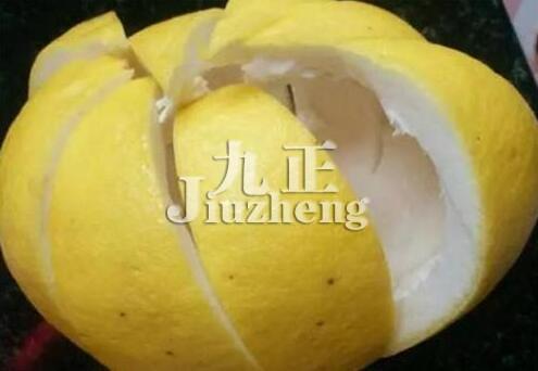 幼儿园柚子皮手工制作图片
