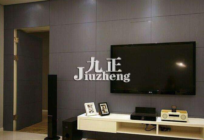 隐形门电视背景墙