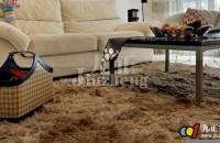 家用地毯如何清洗 家用地毯的清洗方法