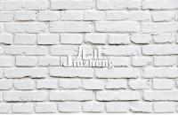 墙砖和地砖的区别 地砖上墙的...