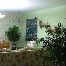 两室一厅田园风格装修1