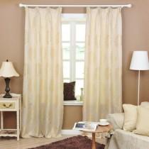 客厅窗帘装修效果图  2012年新款窗帘10