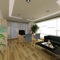 总经理办公室装修效果图大全2012图片 (4 张图)