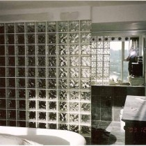 2013卫生间玻璃隔断效果图片3
