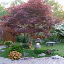 日式庭院景观设计14