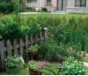 小型私家庭院景观设计