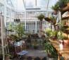 玻璃阳光房装修效果图片欣赏