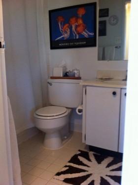 卫生间装修效果图239