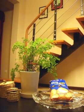 楼梯装修效果图6