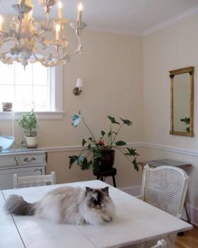 130平欧式公寓餐桌装修效果图388