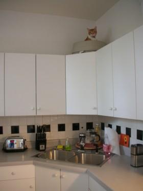 厨房装修效果图244