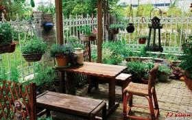 丰富的绿植让家居生活更有生机。