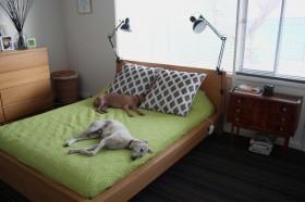 床装修效果图461