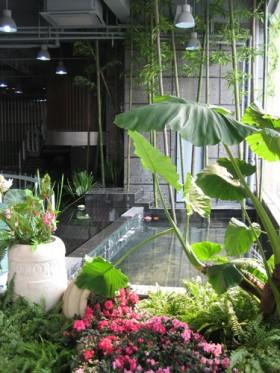 天合房产综合售楼中心花园