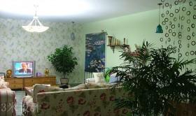 两室一厅田园风格装修客厅电视背景墙装修效果图