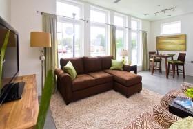 小户型褐色沙发装修效果图