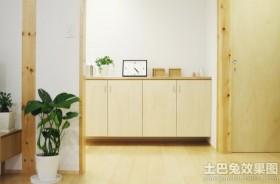 室内盆栽花卉图片