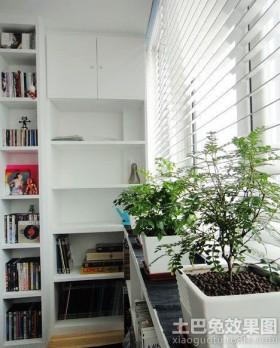 简约风格书房室内盆栽植物图片