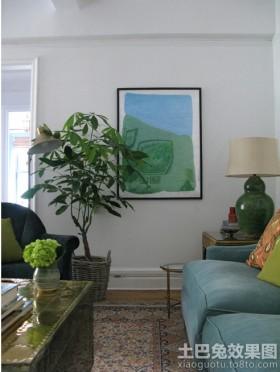 家装客厅发财树图片