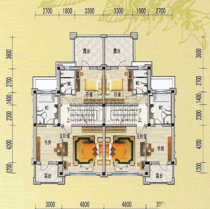 最新两层双拼别墅户型图