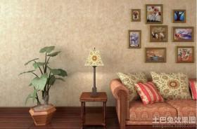 客厅家居植物摆放风水图