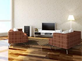 沙发与电视图片